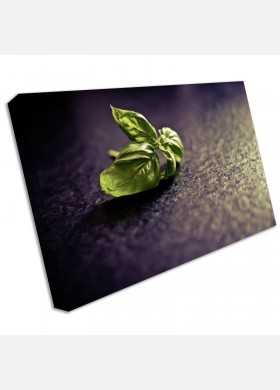 Food and Drink Canvas Art Print fad16